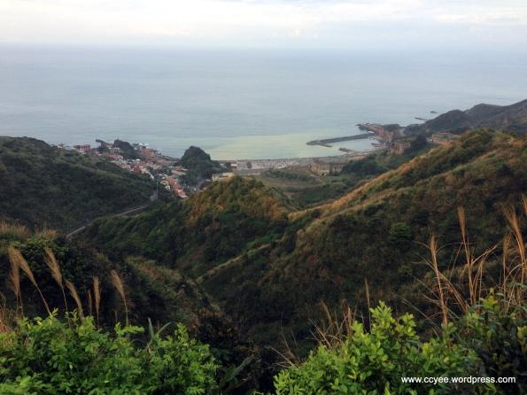Ying Yang Sea